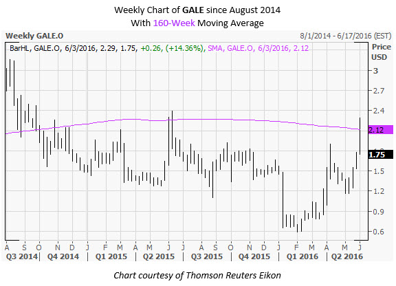 Gale stock options