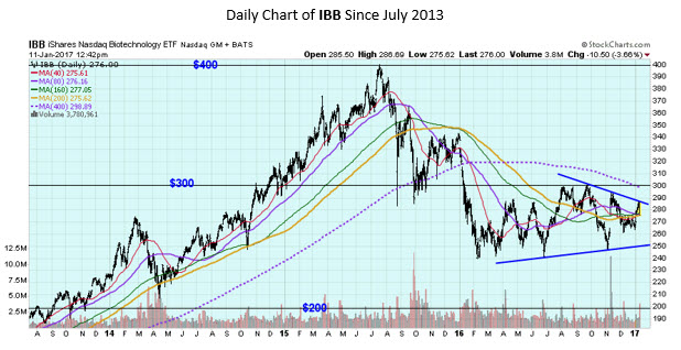 IBB Daily Chart January 11 1