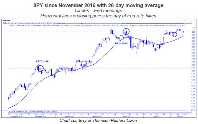 spy daily price chart with 20 day moving average