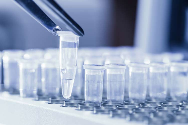 Staab II Sells 3250 Shares of BioCryst Pharmaceuticals, Inc. (BCRX) Stock