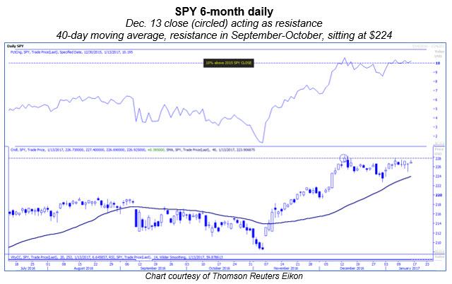 spy daily 0113