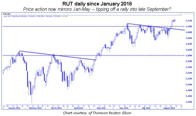 rut daily chart 0824