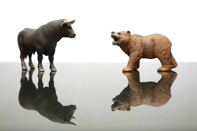 Bull and bear market environment