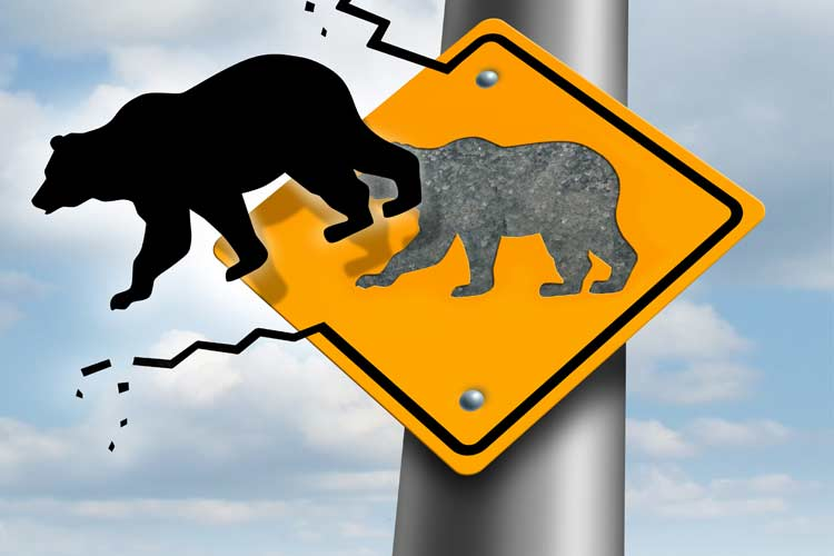 Bearish-RoadSign