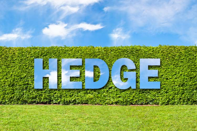 Hedge your bets in the market